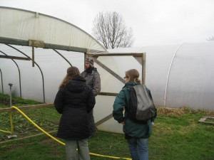 Tom shows us the Canalside polytunnels
