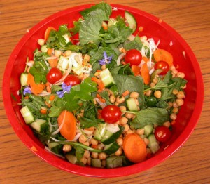 Wild food Salad we enjoyed on a wild food walk in 2011...