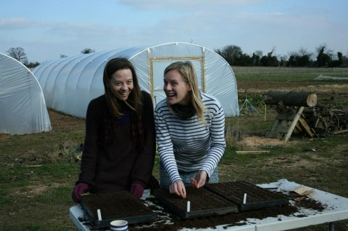 Kirsty and Kate sowing Swiss chard and broad bean seeds