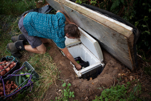 "A traditional ""root cellar"" with a modern twist - old buried freezer!"