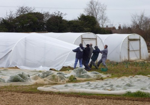 stretching the polytunnel film
