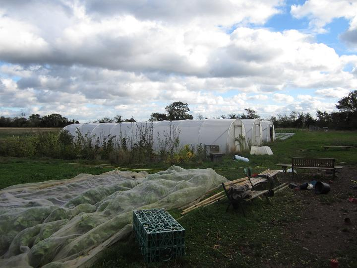 Thanks to our clever members who built the polytunnels so well they are all undamanged!