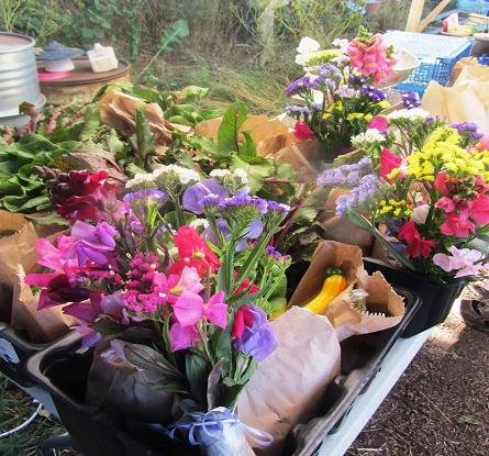 Veg share boxes with optional flower shares.