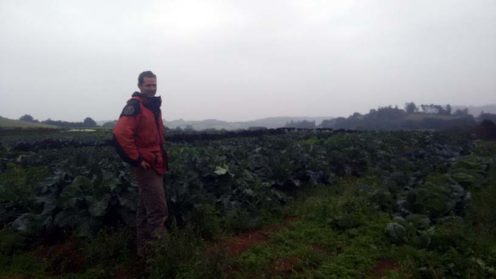 Ed Hamer with his fine brassicas