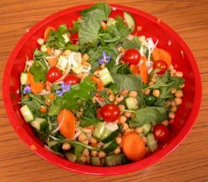 Wild food Salad we enjoyed on a wild food walk in 2011...
