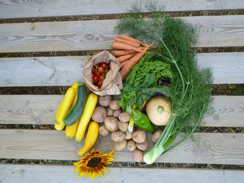 October's second veg box