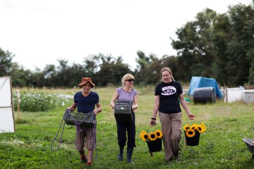 Harvesting together! photo credit Jonathan Cherry