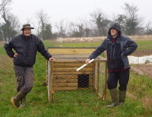 Joanne and Eric after getting the chicken house over the veg beds, taking a breather and thinking that was hard work while the pigs chomp contentedly in the distance