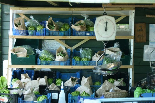 Mid-harvest at The Oak Tree - there is still much more to add to the boxes!