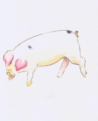 second little piggy autocorrect crop