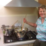Preserving queen Christine!