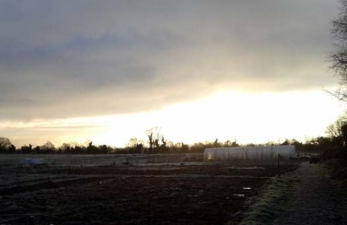 Early winter's morning at the farm