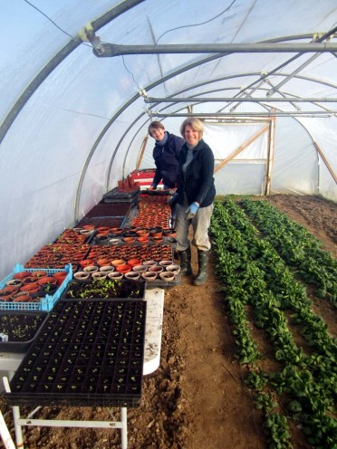 Lucy and Ann busy pricking out early salad crops to be planted out in the polytunnel in the weeks to come.