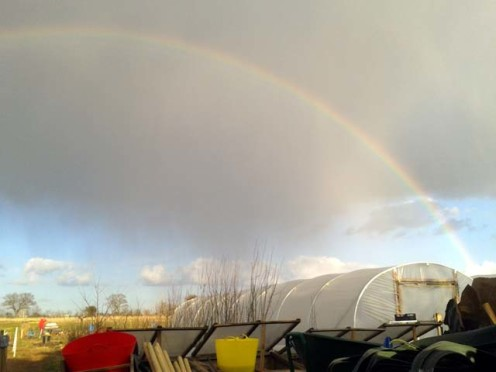 First there was a fantastic rainbow against a dramatic stormy sky.