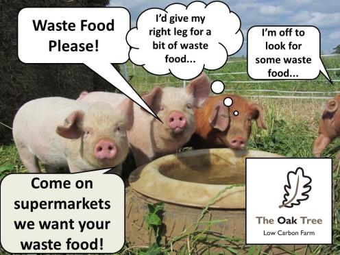 Wastefoodplease